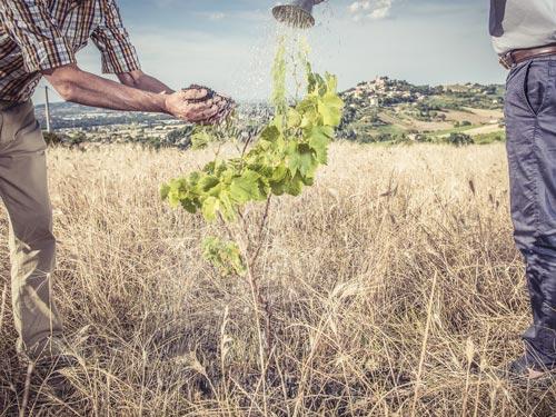 sviluppo-sostenibile-locanda-santuario-san-giovanni-andorno